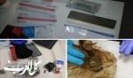 كفركنا: ضبط مخدرات وسيارات واعتقال مشتبهين