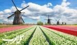 السياحة في هولندا.. بلد الطواحين