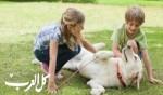 نصائح قبل شراء حيوان أليف لطفلك