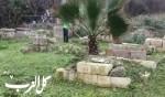 أعمال تنظيف في مقبرة عبد النبي في يافا تل