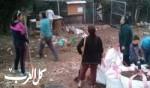 جنة عدن في حي الحليصة - حيفا
