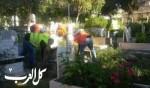الناصرة: البلدية في حملة مكثّفة لتنظيف المقابر