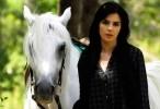 مشاهدة مسلسل السيدة ديلا  الحلقة 10 العاشرة كاملة اون لاين مباشرة بجودة عالية على العرب بدون تحميل