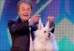 كلب يتحدث اكثر من لغة في برنامج مواهب البريطانيون اونلاين 2015