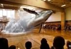 عرض هولوجرام 3D رائع اونلاين 2015