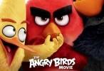 فيلم angry birds