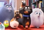 فيلم The Secret Life of Pets