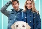 فيلم who get the dog 2016 مترجم للعربية