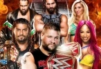 WWE Hell In A Cell - 2