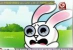 الأرنب و الثعلب - طيور الجنة فيديو كليب قصة