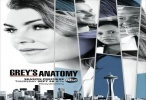 Greys Anatomy 14