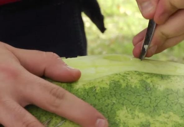 فن النحت على الفاكهة - بيتر حنا
